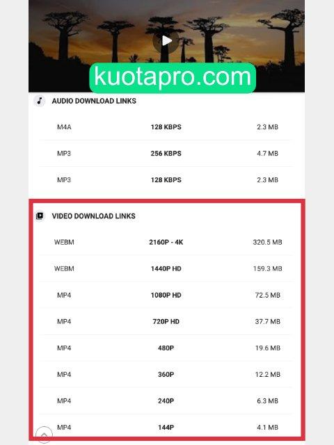 cara download video youtube dengan aplikasi